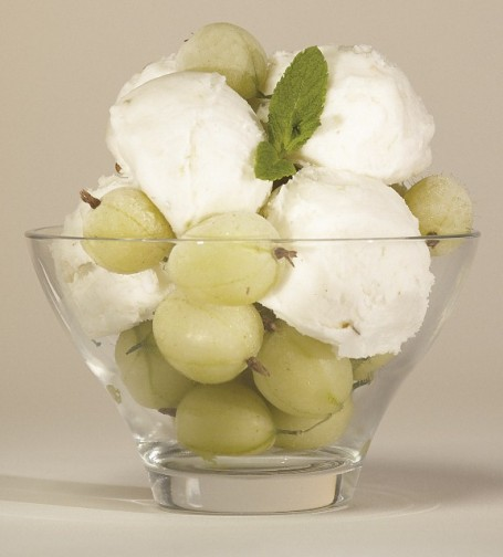 GOOSEBERRY_CUTOUT_(577x640)_thumb