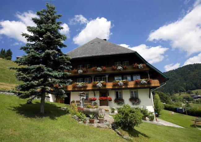 schwarzwald_schwarzwaldhaus_am_front_magnific